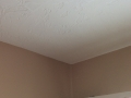 Hand Textured Ceiling